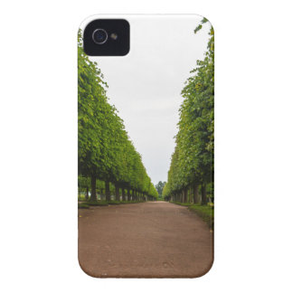Aleksandria Historical Park iPhone 4 Cover