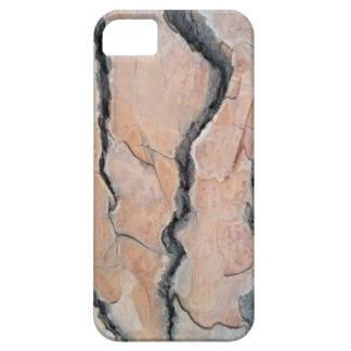 Aleppo pine iPhone 5 case