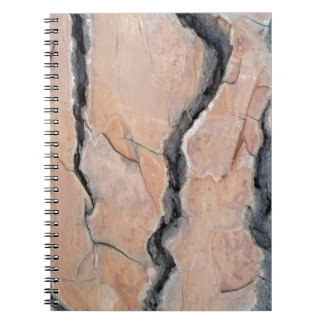 Aleppo pine notebook