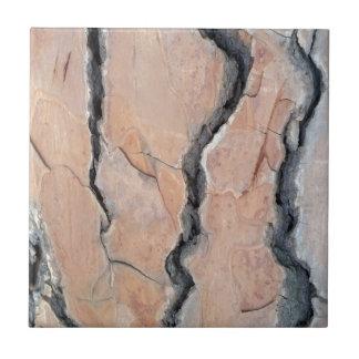 Aleppo pine small square tile