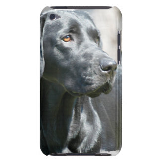 Alert Black Labrador Retriever Dog iTouch Case