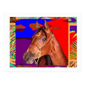 Alert Cute Brown HORSE : Stallion Racer Postcard