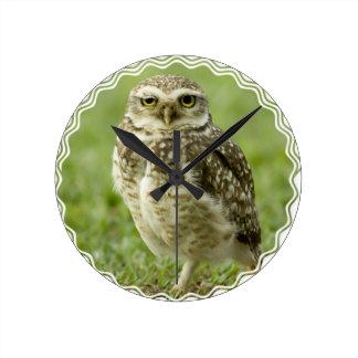 Alert Owl Clock