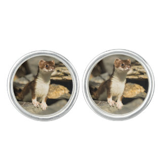 Alert Weasel Cuff Links