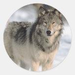 Alert Wolf Classic Round Sticker