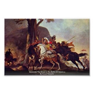 Alexander The Great In The Battle Of Granicus Poster
