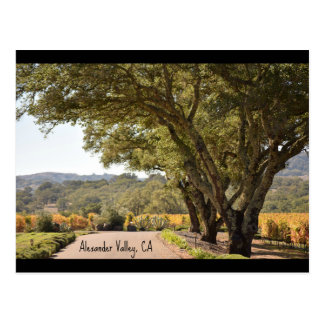 Alexander Valley post card