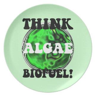 algae biofuel dinner plates
