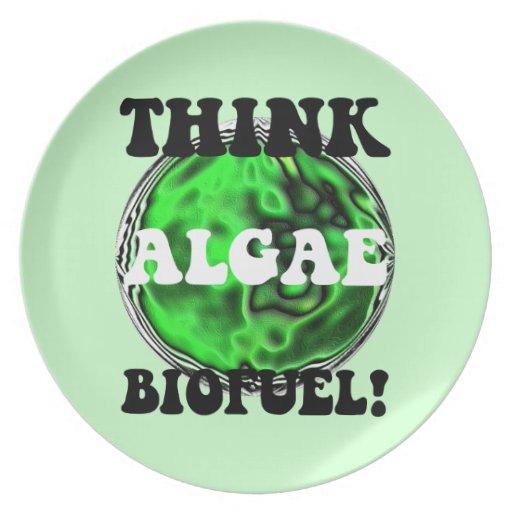 algae biofuel party plate
