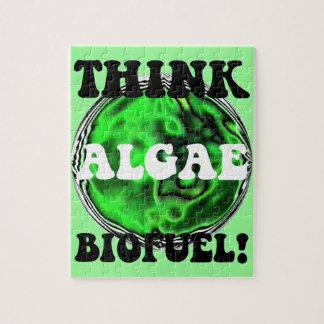 algae biofuel puzzles