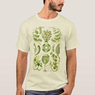 Algae T-Shirt