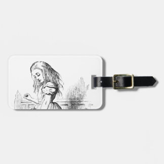 Alice and a Box of Animals Luggage Tag