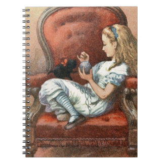 Alice and her Kitten Notebooks