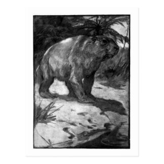 Alice B. Woodward: Diprotodon art postcard