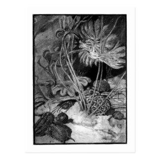 Alice B. Woodward: Ordovician Marine art postcard