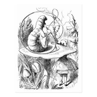 Alice consults The Caterpillar Postcard