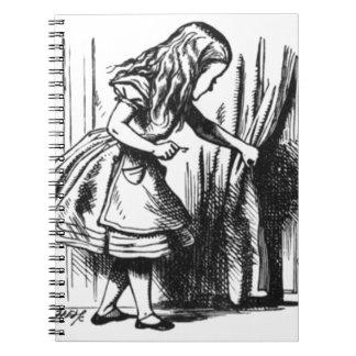 Alice Finds a Door Notebook