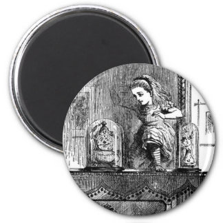 Alice in a Mirror Magnet