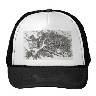 Alice in Wonderland and the Cheshire Cat Trucker Hat