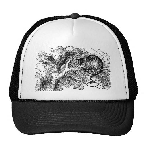 Alice in Wonderland; Cheshire Cat with Alice Mesh Hat