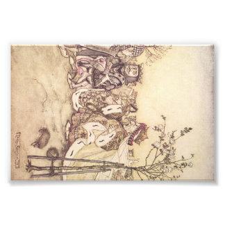 Alice in wonderland print #2 photograph