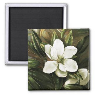 Alicia H. Laird: Magnolia Grandflora Magnet