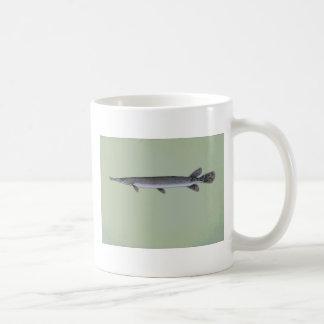 Aligator gar coffee mug