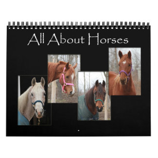 All About Horses Wall Calendars