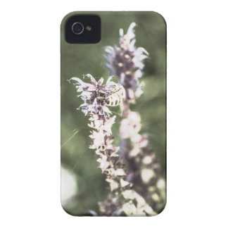 All About Pollen iPhone 4 Case-Mate Case