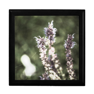 All About Pollen Large Square Gift Box