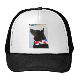 All American Mesh Hat