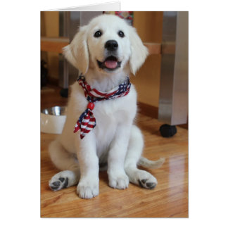 All American Puppy, the cutest Patriot Card