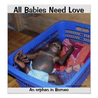 All Babies Need Love Poster