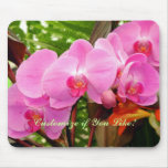 All In a Row Gorgeous Magenta Orchid Mouse Pad