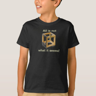 All is not what it seems tee shirt for kids