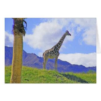All Occasion 3 Giraffes Card