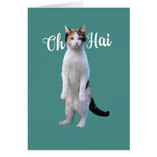 All Occasion Say Hello Cute Standing Cat Card