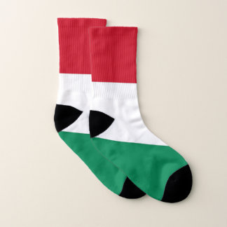 All Over Print Socks with Flag of Hungary
