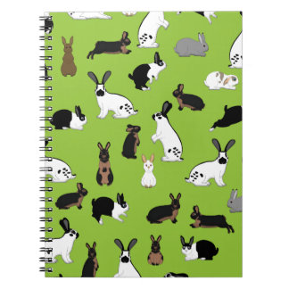 All rabbits notebooks