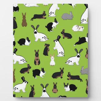 All rabbits plaque