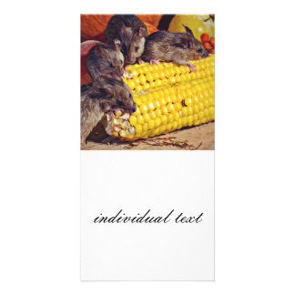 all you can eat photo greeting card