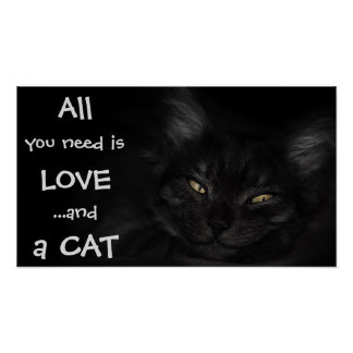 All you need is love...and a cat / Black cat Poster