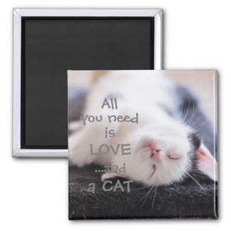 All you need is love...and a cat // kitten magnet