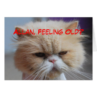 Allan Brother Birthday Persian Cat Humor Card