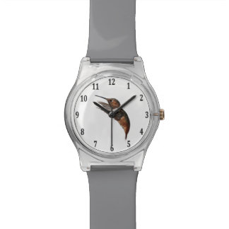 Allen's Hummingbird Wrist Watches