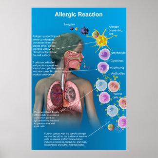 Allergic Reaction poster