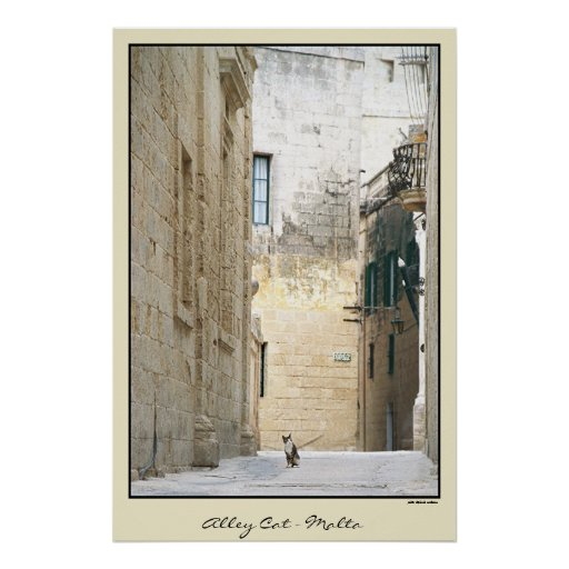 Alley Cat - Malta Poster