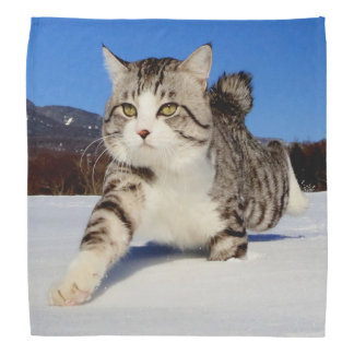 Alley cat niyan good fortune< The snowfield it Head Kerchief