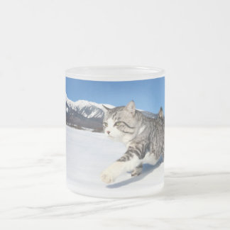 Alley cat niyan good fortune< Yukio cat > Frost Frosted Glass Coffee Mug