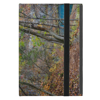 Alley Mill Autumn Walk Cover For iPad Mini